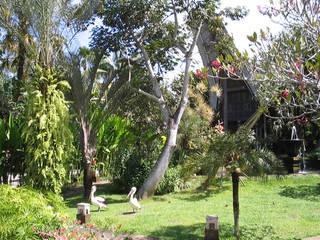 Bali Bird Park © Bali Bird Park