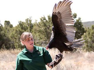 Der Wildlife West Nature Park  in New Mexico © John Weckerle