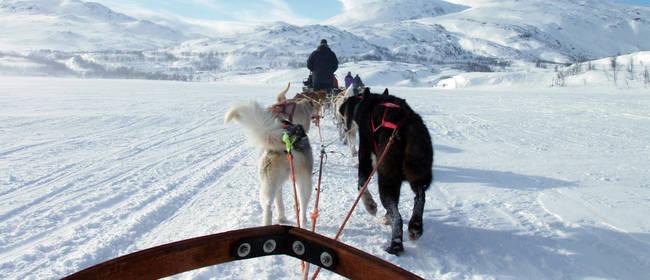 Ausflugsziele und Attraktionen in Schweden