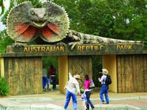 © Australian Reptile Park