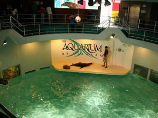 Aquarium of Niagara © Triple Tri